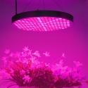 Лампа для растений 50Вт, 250х светодиодов, широкий спектр, 2900LM
